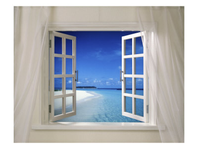 Window Designs ideas and
